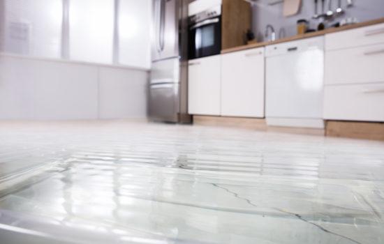 minimize property management damage